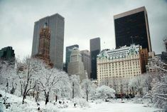 Get more from your NYC getaway with exclusive deals and special offers from Hotel Belleclaire. Browse and book limited-time rates and hotel packages to save! Romantic Holiday Destinations, Resorts, Nyc Christmas, Central Park Nyc, Nyc Hotels, Hotel Packages, Park Pictures, Most Romantic, Holiday Travel