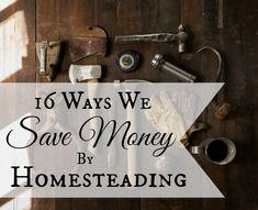16 Ways We Save Money By Homesteading | areturntosimplicity.com