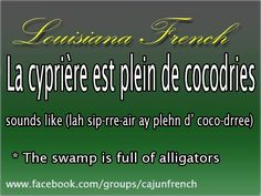 The swamp is full of alligators! How To Speak French, Learn French, Learn English, Lake Charles Louisiana, Lafayette Louisiana, Cajun French, French Creole, Louisiana Creole, French Expressions