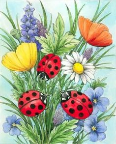 Gallery.ru / Фото #15 - Понравилось... - Anneta2012 Painted Bricks Crafts, Brick Crafts, Painted Rocks, Flower Art Drawing, Garden Drawing, Ladybug Art, Beautiful Sketches, Spring Painting, Ribbon Art