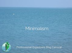Have you heard of the #minimalism trend?Blog post round up of 20 profession organizers sharing their thoughts on minimalism.