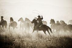 Wyoming_Roundup.jpg (900×600)