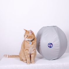 """Astronaut Cat Bed from Jenna's Red Rhino on etsy because boocat wants to play """"space cat"""""""