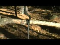 ▶ 4 Bushcraft Knots everyone should know - YouTube~  Lark's Head, Clove Hitch, Constrictor Knot, basic Bowline Knot.Very clear instruction. Good Job!