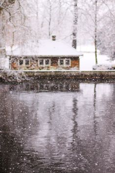 Snowing at the lake water outdoors winter trees woods snow country lake cold cabin Winter Szenen, I Love Winter, Winter Magic, Winter White, Winter Trees, Snow White, Ventana Windows, Beautiful World, Beautiful Places