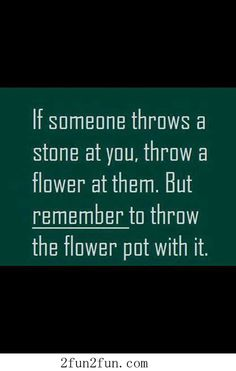 Flower and stone - Funny Pictures