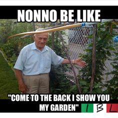 When my Grandé Nonnò was still alive&whenever the times I'd visit him&Grandé Nonnà he would show me the garden he was super proud of :') <3