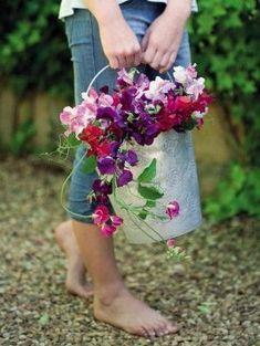 Sweet Peas - Growing and Planting Tips. I love sweet peas, even if they do make me sneeze! Pea Flower, Flower Farm, Holding Flowers, Beautiful Flowers, Prettiest Flowers, Garden Plants, Flower Power, Flower Arrangements, Nature