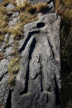 """""""The Man Who Fell from Heaven"""" petroglyph in Prince Rupert Harbour, Canada."""