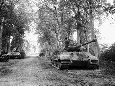 "Third Panzer Division ""Totenkopf"". Tiger II"