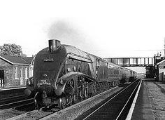Disused Stations: Tollerton Station Diesel Locomotive, Steam Locomotive, Steam Trains Uk, Old Lorries, Disused Stations, Steam Railway, British Rail, Old Trains, Steam Engine