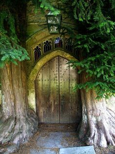 Stow on the Wold    This is the most mysterious looking church door that I know! The yew trees must have been planted many many years ago, and are now part of the structure of the north doorway, and give off a green light! Truly an image of the Yew as Tree of Life.