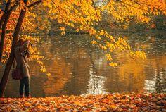 Nu när höstmörkret kommit så är det lätt att tappa ork och energi. Särskilt tufft kan det vara efter den sommar vi har haft detta året med få varma och soliga dagar. Många av oss har inte haft möjlighet att fylla på våra förråd av D-vitamin ordentligt för att möta hösten och den kommande vintern... #piggareihöstmörkret #piggare #höstmörkret #stressmanagement #hälsaochvälmående