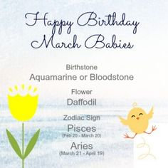 Make someone a beary happy bear this month with these March birthday gifts ideas! March Baby, Happy March, March 3rd, 21st Birthday, Birthday Gifts, March Pisces, Zodiac Signs Pisces, Daffodils, Inspirational Quotes