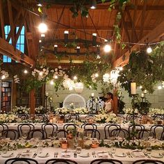I love the juxtaposition of the rustic, raw timber beams, the lush foliage and elegant crystal chandeliers. Sheree and her team created magic for Nadisha & Hans' s wedding last weekend. #countrywedding #she_design #crystalchandelier #foliage #poruwaceremony #candlelight Wedding Goals, Our Wedding, Dream Wedding, Wedding 2017, Rustic Wedding, Wedding Tables, Wedding Table Flowers, Timber Beams, Table Decorations