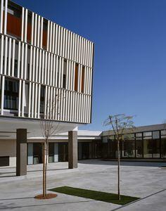 Gallery - Ceip Rincón De Bonanza / MACLA Arquitectos - 9