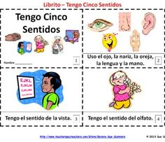 Spanish Fives Senses 2 Elementary Emergent Reader Booklets by Sue Summers - Cinco Sentidos - One with text and images, one with text only so students can sketch and create their own versions of the booklets.