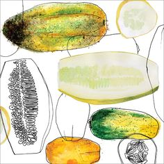 Cucumbers, food illustration by Jamie Runnells www.jamierunnells.com