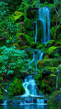 Photography of places to see around the world. Beautiful Nature Wallpaper, Beautiful Gif, Beautiful Landscapes, Beautiful World, Beautiful Places, Amazing Places, Cool Pictures Of Nature, Nature Photos, Waterfall Scenery