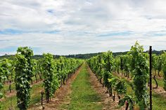 Kew Vineyards Estate Winery, Jordan, Ontario, Jordan Historic Village