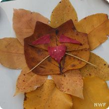 Make Animal Art from Leaves - National Wildlife Federation