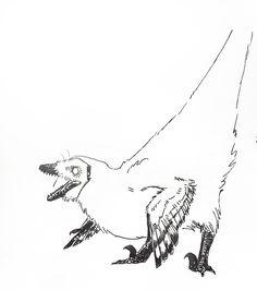 Troodon studies from my sketchbook