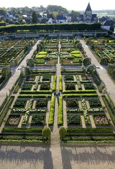 Patricia's Frog Blog: The garden at Chateau Villandry