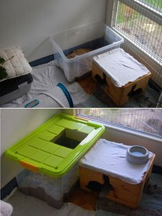 """A digging box - tote filled with sand or dirt (black earth / potting soil?) and covered with a lid - make an """"escape hole"""" in the top and bunnies can dig away without making a huge mess!"""