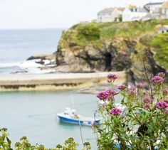 1000 Images About Port Isaac Cornwall On Pinterest
