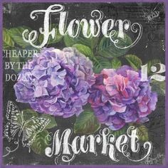 Chalk Flower Market-Hydrangea by Geoff Allen   Ruth Levison Design