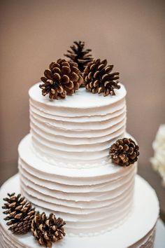 Love the simplicity of the cake and the color contrast between it and the pinecones