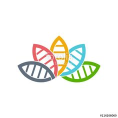 """Download the royalty-free vector """"DNA Biology group of leaves logo. Vector graphic design"""" designed by Fotolia365 at the lowest price on Fotolia.com. Browse our cheap image bank online to find the perfect stock vector for your marketing projects!"""