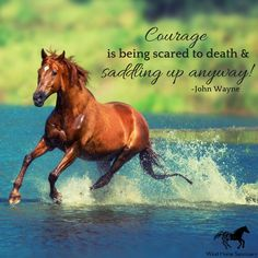 """""""Courage is being scared to death and saddling up anyway!""""-John Wayne ~ Wind Horse Sanctuary offers the opportunity to connect your mind, body and spirit with the experience of Equine Facilitated Learning (EFL). Learn more at our website: www.windhorsesanctuary.com"""