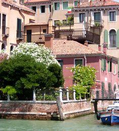 Coin de jardin à Venise