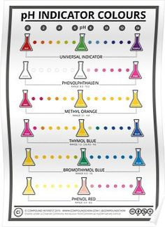Colours of Common pH Indicators Poster