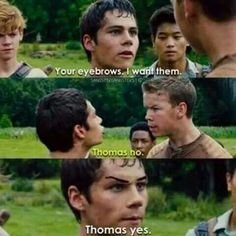Thomas Yes!!! Eyebrows are a unique and precious thing to the world so appreciate them!!!