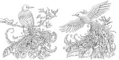 <i>Animorphia: An Extreme Coloring and Search Challenge</i> goes on sale October 13.