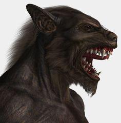 "Sanctum Arts's ""The Horde"" werewolf 3D model, for Poser..."