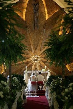 Wheat grass, bamboo, cacti and small potted trees decorated the Don Bosco Church. Manila, Philippines