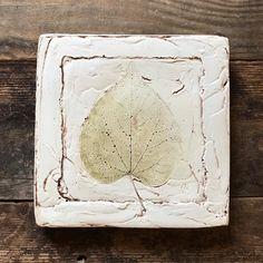 Simple leaf print in plaster. Plaster Cast, Slow Design, Love Home, Leaf Prints, Leaves, Create, Simple, Nature, Life