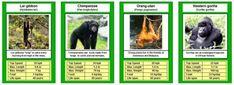 Free Printable Card Game - Animal Trumps   HubPages