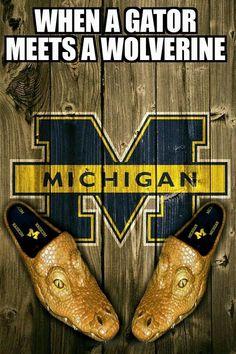 Ohio St Michigan Rivalität