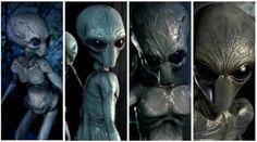 "Science Fiction Art - ""ALIENS NIGHT 2 - The Greys Return"" - Alien abduction Sci-Fi Short Movie Watch here: http://www.andrearicca.it/aliens-night-2.html - Andrea Ricca Sci-Fi Short Movies, #scifi, #aliens, #sciencefiction, #spaceship, aliens abduction, close encounters, space monsters, science fiction art, spaceship, alien invasion, grey aliens, CGI, VFX, 3D,   https://www.youtube.com/watch?v=QY3ue3hFygw  http://www.andrearicca.it/aliens-night-2.html"