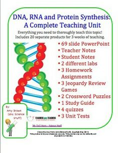 This bundled unit contains at least 2 weeks of teaching materials or 3 weeks if you complete all of the enclosed labs. The title of this unit is DNA, RNA and Protein Synthesis. This unit has everything that a teacher needs to teach a unit on this topic to Biology or life science students. It covers: The history of DNA discoveries, the structure of DNA, replication, transcription, and translation / protein synthesis.
