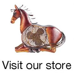 This site has instructions on how to make all kinds of horse tack, blankets, wraps, and other accessories!  :  DIY Horse | The Equinest