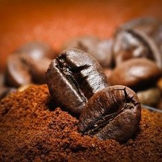 If your meat locker stinks like a gym locker, fill a nylon stocking with coffee grounds and toss it inside the back of the fridge. The invigorating scent of java overpowers odors from fish, cheese, and other harsh-scented foods.