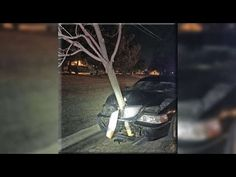 Drunk Driver Drove Car With Tree Stuck In Hood