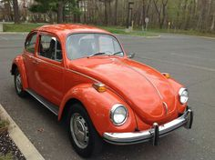 Vw Beetle / 1971 / New York