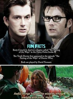 Barty Crouch Jr. vs. The Tenth Doctor I don't even know how to classify this!