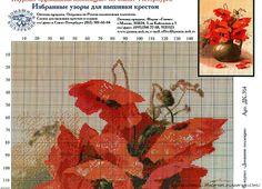 Маки и полевые цветы | Записи в рубрике Маки и полевые цветы | Дневник kvites : LiveInternet - Российский Сервис Онлайн-Дневников